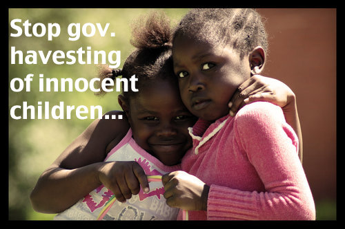 What is adoption, Issues Within The Court System
